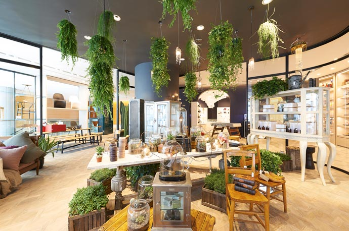 lane-crawford-ifc-mall-home-store-plant-decoration-butterboom
